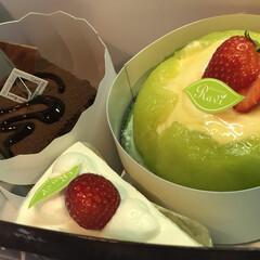 シャンプー/ケーキ/ありがとう/母の日 黙って出かけた長男君 帰ってきて、これ!…