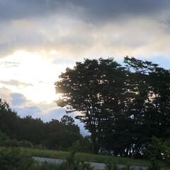 朝の風景/梅雨入り おはよ〜ございます😊 今朝5時半の我が家…