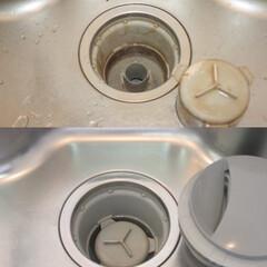ハウスクリーニング/クリーニング/排水溝/水周り/キッチン/掃除/... 普段毎日使っているとなかなか気が付かない…