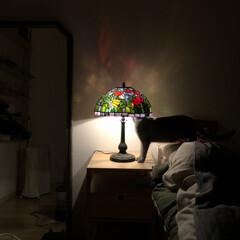 洋室/レトロ/アンティーク/照明/ルームライト/オシャレ/... 先日、実家に帰った時に祖父母がずーっと使…(1枚目)