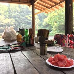キャンプ部/アウトドア部/グレープフルーツ/くだもの/キャンプ キャンプの朝は、なんと言ってもグレープフ…
