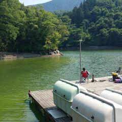 アウトドア好き/キャンプ好き/山/山登り/湖畔/湖/... これは相模湖だったかな〜🧐 湖畔のバンガ…