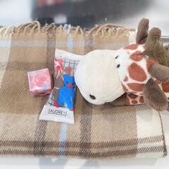 バレンタイン2020/バレンタイン/お菓子/オードリー/nici/キリン/... 友達から貰ったお菓子〜 お気に入りの筆箱…