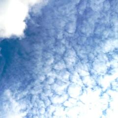 こどもの日/青空 気温28℃…暑い子供の日( ´~`)💦 …
