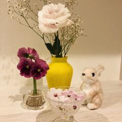 お花/イースター ダイソー/最近買った100均グッズ 娘ちゃんが持って帰ってきてくれるお花たち…
