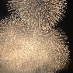 花火大会 ふくろい遠州の花火🎆