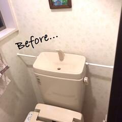 トイレDIY/タンクレス/DIY収納/簡単/掃除/暮らし/... 外出自粛中に、どうにかタンクレスにしたく…