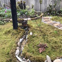 庭に川/レイズドベッド/小道/蛇口/車輪/ビオトープ/... 太陽光発電の噴水装置を使って、川を作りま…