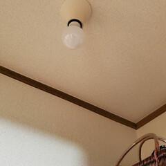 ランプシェード風/リメイク/照明器具/鉢カバ-/裸電球/生活の知恵/... 一ヶ所リメイクし忘れ。 脱衣場の照明器具…