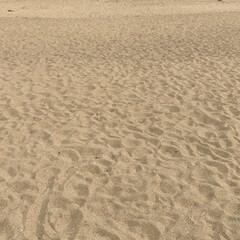 海岸 誰もいないかなぁと思い近くのビーチへ、意…(2枚目)