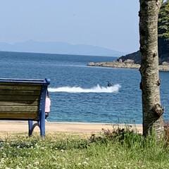 海岸 誰もいないかなぁと思い近くのビーチへ、意…(5枚目)
