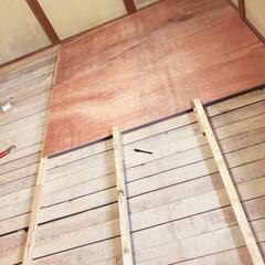 畳からフローリングへ/ベニア板/DIY/建築 畳からフローリングへする過程です! 素人…