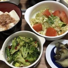 麺類大好き/今日の献立/野菜たっぷり/夏対策/スタミナご飯/スタミナ丼/... タンパク質は朧豆腐で補う、とろろ冷や麦御…