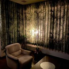 カーテン/雑貨/インテリア/おしゃれ/購入品 居間のカーテンをようやく 25年ぶりに新…
