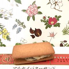 北海道/六花亭/お菓子 みんな大好き六花亭の マルセイバターサン…