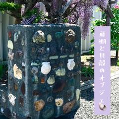 貝殻/藤棚/オブジェ 以前から散歩中にシュールな オブジェがあ…