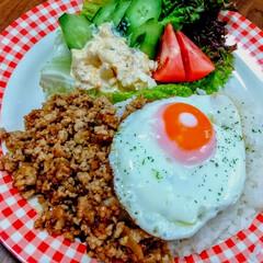 山本ゆりさんレシピ/カフェ風ごはん/おつまみ/おうちごはん/ランチ 肉味噌を作るのにハマッてます。  具材は…