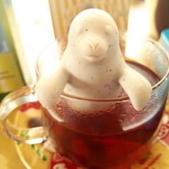 茶漉し/紅茶  「わたしのキッチン道具大賞」フォトコン…
