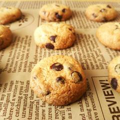 チョコチップクッキー/きなこクッキー きなこ味のチョコチップクッキーです。食べ…