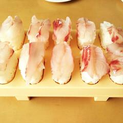 寿司 黒鯛をいただいたからと、夫のお父さんがお…