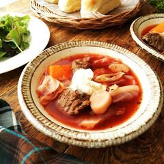 ボルシチ/スープ 夕食にボルシチを作りました。 最近冷たい…