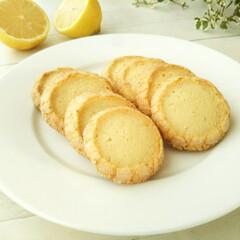 レモン/サブレ レモンの皮も果汁も混ぜこんで焼く、爽やか…