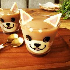 柴犬/ミルクティー/ゼリー/スライス生チョコレート 柴犬の顔の模様がついたカップで、ミルクテ…