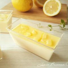 レモン/ババロア 暑くなると食べたくなるのが、レモン味の爽…