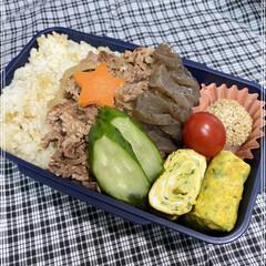 「お弁当🍱🍴115   朝、明るくなるのが…」(1枚目)