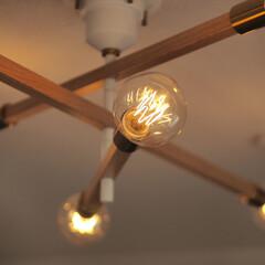 灯り/アストロバウム/インテリア/ライト/ルームライト/間接照明/... 最近やっと購入したバルブです。本体はずっ…