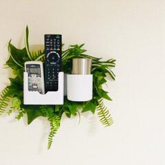 DIY/100均DIY/原状回復/壁収納/壁/収納 100均商品で作りました。 クリアファイ…