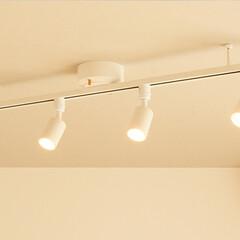 シーリングライト/スポットライト/LED電球/LED照明/ダクトレール/シンプル/...