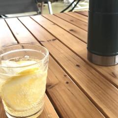 イッタラ iittala アイノアアルト クリア 950252 タンブラ- 220ml ペア   イッタラ(タンブラー)を使ったクチコミ「作ったレモンシロップ でレモンスカッシュ…」(1枚目)