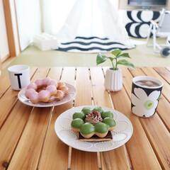 メラミンコップ メラミン 食器 コップ カップ 子供 こども キッズ DESIGN LETTERS デザインレターズ メラミンカップ | Design Letters(コップ)を使ったクチコミ「食べたかったミスドのコラボドーナツ🍩 め…」