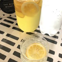 差し入れ/手作りジュース/フルッタ/イッタラ/レモンスカッシュ/レモンシロップ 暑いので手作りレモンスカッシュの差し入れ…