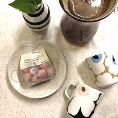 KINTO コーヒーカラフェセット SCS-04-CC 600ml 27621 | キントー(ナプキン)を使ったクチコミ「今日仕事だった旦那さんがコーヒー豆とブー…」