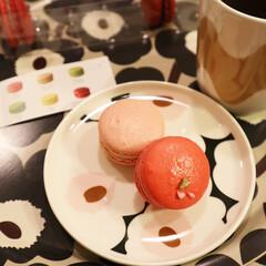 マリメッコ UNIKKO PLATE 20CM ベージュ×ホワイト | marimekko(皿)を使ったクチコミ「少し前のおやつ◷ マカロンてなんでこんな…」(2枚目)