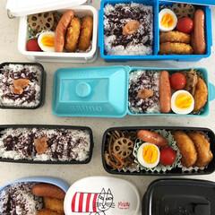 リサラーソン/ブルーノランチボックス/コロッケ弁当/お昼ごはん/お弁当 今日のお昼ごはん🍱 今日は家族みんなお弁…