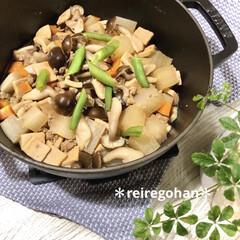 ストウブ Wa-NABE M 40501-005 | STAUB(両手鍋)を使ったクチコミ「晩ごはん ⭐️高野豆腐と大根のそぼろ煮⭐…」