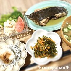 カネコ小兵製陶所 リンカ 12cmボウル(その他食器、カトラリー)を使ったクチコミ「昨日の晩ごはん🍚  ⭐️カレイの煮付け …」