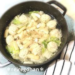 ストウブ Wa-NABE M 40501-005 | STAUB(両手鍋)を使ったクチコミ「晩ごはんは ⭐️鶏塩鍋⭐️でした🥰  旦…」