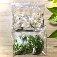 ポトス・エンジョイ(観葉植物)を使ったクチコミ「すぐ使わない野菜は冷凍します🥰  しめじ…」