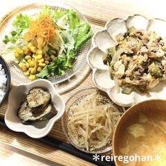 カネコ小兵製陶所 リンカ 17cmプレート(皿)を使ったクチコミ「晩ごはん🍚  ⭐️ゴーヤチャンプル ⭐️…」
