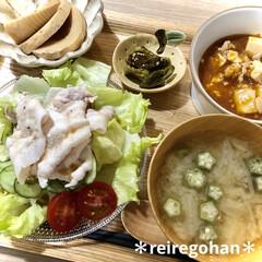 カネコ小兵製陶所 リンカ 12cmボウル(その他食器、カトラリー)を使ったクチコミ「昨日の晩ごはん ⭐️冷しゃぶ ⭐️麻婆豆…」