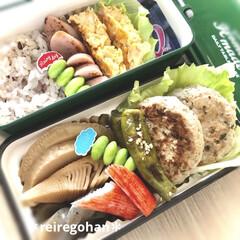 ミコノス スリムタイトランチ2段 グリーン | mykonos(弁当箱)を使ったクチコミ「旦那弁当 ⭐️雑穀米70g ⭐️おから入…」