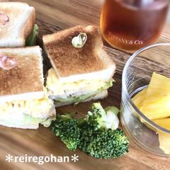 アミューズ・ブッシュ ボデガ 7.10860(皿)を使ったクチコミ「朝ごぱん🍞  旦那リクエストでサンドイッ…」