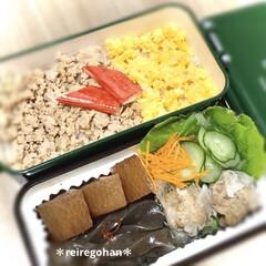 ミコノス スリムタイトランチ2段 グリーン | mykonos(弁当箱)を使ったクチコミ「旦那弁当〜  旦那の好きなそぼろごはん🍚…」