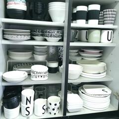 メラミンコップ メラミン 食器 コップ カップ 子供 こども キッズ DESIGN LETTERS デザインレターズ メラミンカップ   Design Letters(コップ)を使ったクチコミ「.。*♡お皿収納♡*。.  食器が大好き…」