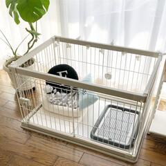 おうち時間/おうちで過ごそう/ペット/わんこのいる暮らし/犬のゲージ/インテリア/... 愛犬のお部屋です♡ ホワイトをベースに、…