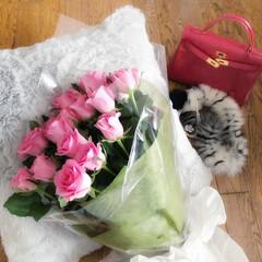 薔薇/花束/お誕生日/プレゼント/エルメス/ケリーバッグ/... お誕生日にいただいた薔薇のブーケ♡ 久し…